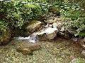 철원 금학산 담터계곡 물소리-2