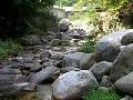 계곡물소리/동해의 어느 팬션옆 계곡(2009년8월25일)