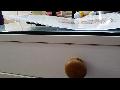 액티베이터환자인터뷰동영상