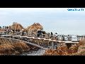 울산 대왕암, 경상도여행, 한국여행, 국내여행, 한국관광, 한국투어, 한국여행TV, Korea Tour TV