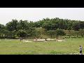 [동영상] 송파구 '올림픽공원의 여름' 풍경 2    (20190608)