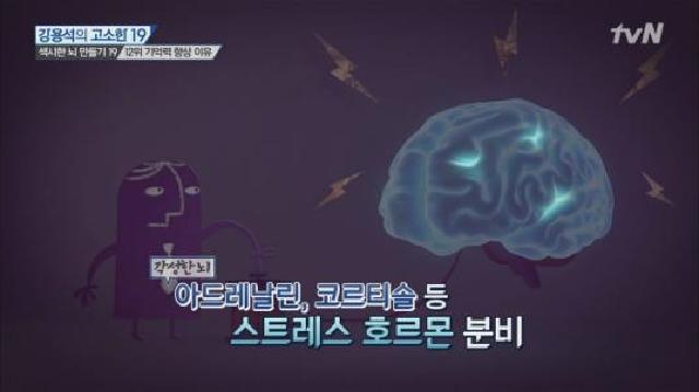 초단기 속성 기억력 향상법