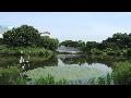 [동영상] 송파구 '올림픽공원의 여름' 풍경 3   (20190608)
