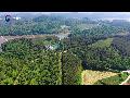 산림분야 사회적경제가 숲을 더 풍요롭게 할 것입니다.