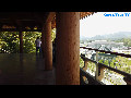 죽녹원, 전라도여행, 한국여행, 우리나라여행, 국내여행, 한국투어, 대한민국여행, 大韩民国旅行, Korea Tour TV