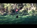 골프장서 봉춤 추는 아기 곰