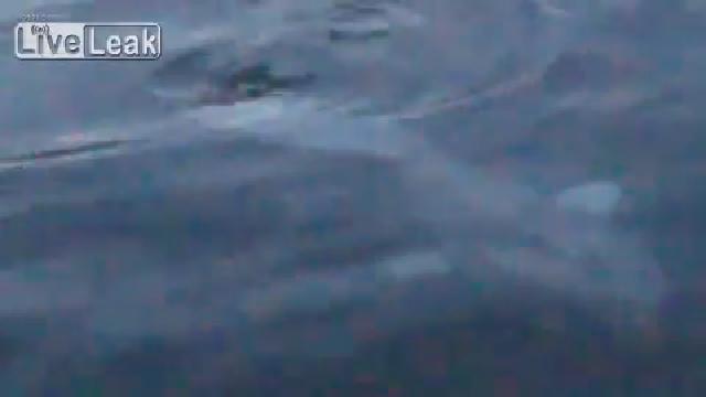 바다속에 사는 괴물 물고기