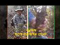 (6월달/지치) 약초꾼이 직접 채취한 자연산 지치(주치)