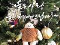 <이벤트> Merry Christmas! 크리스마스 트리는 무슨 나무?