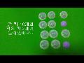 상품 설명 동영상 제작