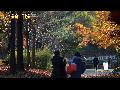 서울숲 가을풍경