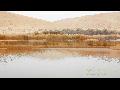 중국 내몽고자치구 - 바단지린 사막