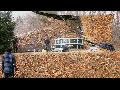 파평윤씨 남양공파 (종일문중) 조상님 가족묘역 주위 시계(視界) 청소 작업