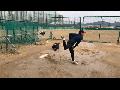 2018년도 야구 동계훈련 7회차(마지막)