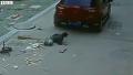 차에 치이고도 구사일생한 소년