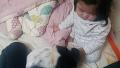 적극적인 개와 귀찮은 아기