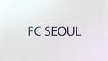 FC 서울 팬의 후덜덜한 능력