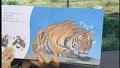 아람-자연관찰 '자연이랑' 맹수의 왕 호랑이의 또 다른 모습 [북터뷰] 아이BOOKTV