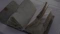 남극 100년 전 수첩의 내용은?