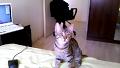 물어오기 잘하는 터키 고양이