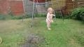 스프링클러를 처음 본 아기