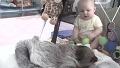 아기와 의외의 조합 자랑한 동물