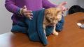 버리는 스웨터 이렇게 쓰세요