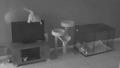 CCTV에 찍힌 TV 부순 범인