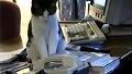 귀염 주의 전화 받는 고양이
