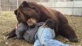 자는척하면 곰이 안 때린댔어