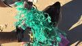 그물에 걸린 물개 구조 영상