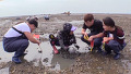 화성시 매력 중 하나 갯벌 체험