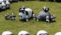 대단해, 팬더가 대체 몇 마리야?