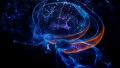 뇌 속 의식을 켜고 끄는 스위치