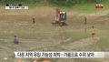 """'피라니아 저수지' 물빼기 완료…""""번식 없는 듯"""""""