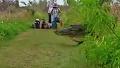 플로리다에 나타난 거대악어