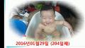 2016년01월29일 204일째 덕규 목욕하는 사진