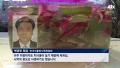 '청산가리 6천배' 독 품은 통영 '협죽도', 20년 째 방치