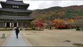 ▣전북 김제 [금산사]의 경내 [가을풍광]과 명상말씀 [슬기로운 삶중에서..]▣