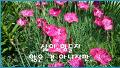 인 생 길  동 무
