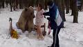 곰과 목숨 걸고 화보 찍는 모델