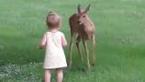 동물들도 아기를 보면 달라져