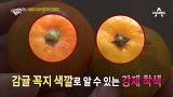 겨울철 대표 간식 귤, 강제 착색 여부 확인 법 [먹거리X파일] 20151129 191회 채널A
