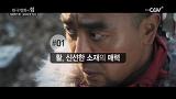 한국영화의 힘 [최종병기 활] 편 일요일 밤10시 채널CGV 방영!