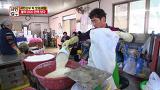 [선공개] 쌀이라고 같은 쌀이 아니다! 서민갑부 떡 맛의 비밀 [서민갑부] 0211 60회
