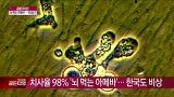 치사율 98% '뇌먹는 아메바'… 한국도 비상 [골든타임] 20150303 148회 채널A