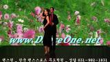 댄스원-사교춤사교댄스 스포츠지루박동영상