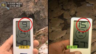 미스터리 해결사, 신기한 동굴 [생활의발견] 332회 20170119