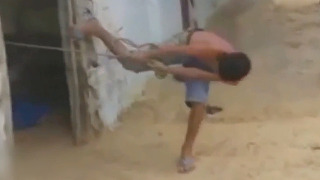 소년과 밀당하는 동물 반전 정체