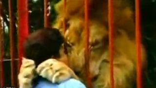 사육사 사랑한 사자의 표현